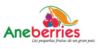 logo-aneberries-retina